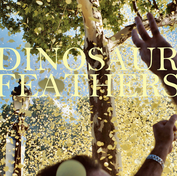 New Track From Dinosaur Feathers.