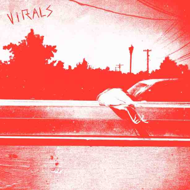 Introducing The Virals.
