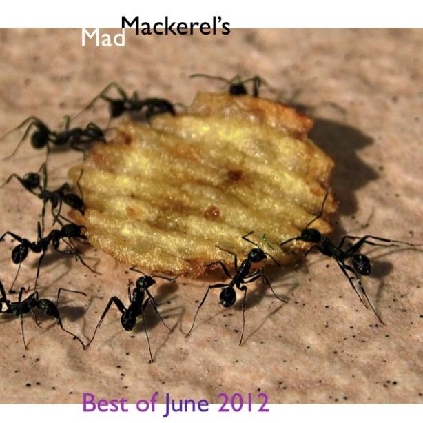 Mad Mackerel's Free Mix - Best of June 2012.