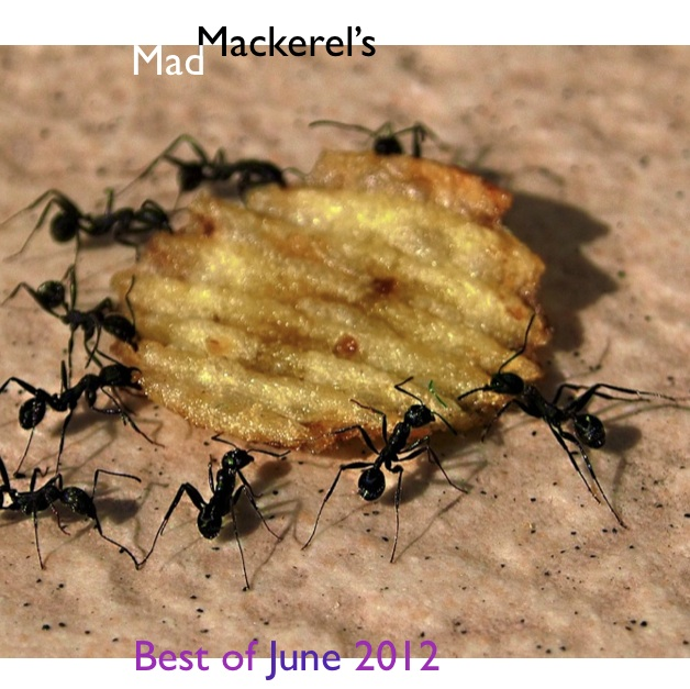 Mad Mackerel's Free Mix - Best of June 2012.