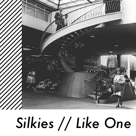 Introducing >>> Silkies.