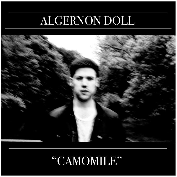 Introducing >>> Algernon Doll.