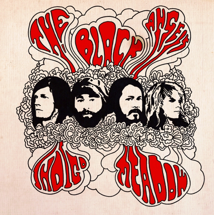 The Black Angels Indigo Meadow Album Cover