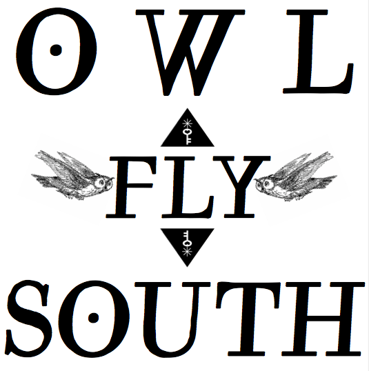 MM Shorts 341: Owl Fly South