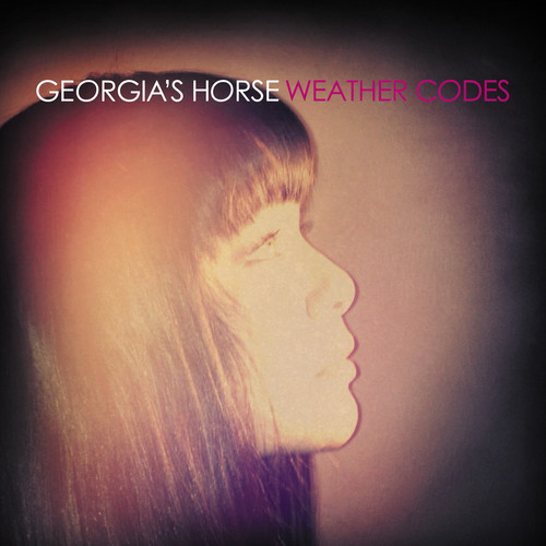 Georgia's Horse Release Weather Codes