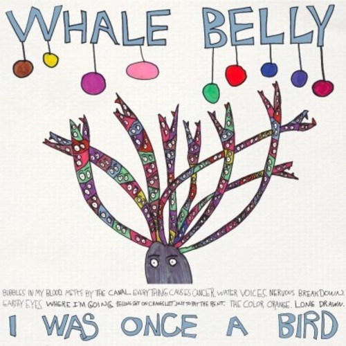 Introducing >>> Whale Belly