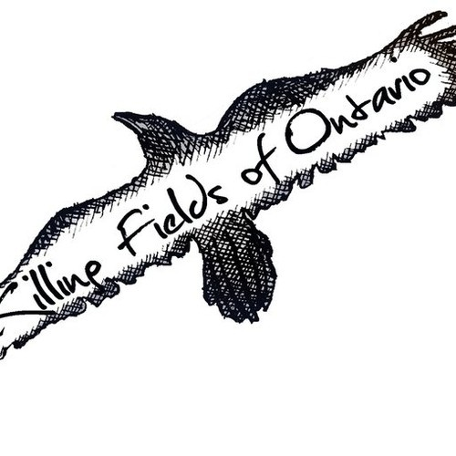 New Track From Killing Fields of Ontario