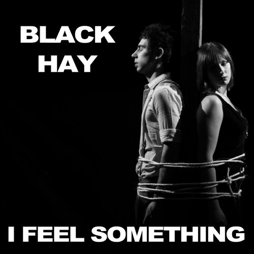 MM Shorts 507: Black Hay