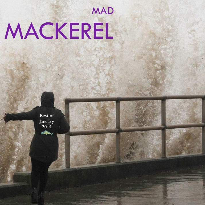 Mad Mackerel's Best Of January 2014 Free Downloads