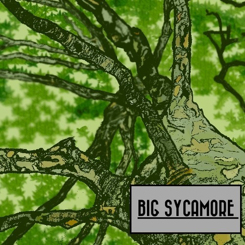 Introducing >>> Big Sycamore