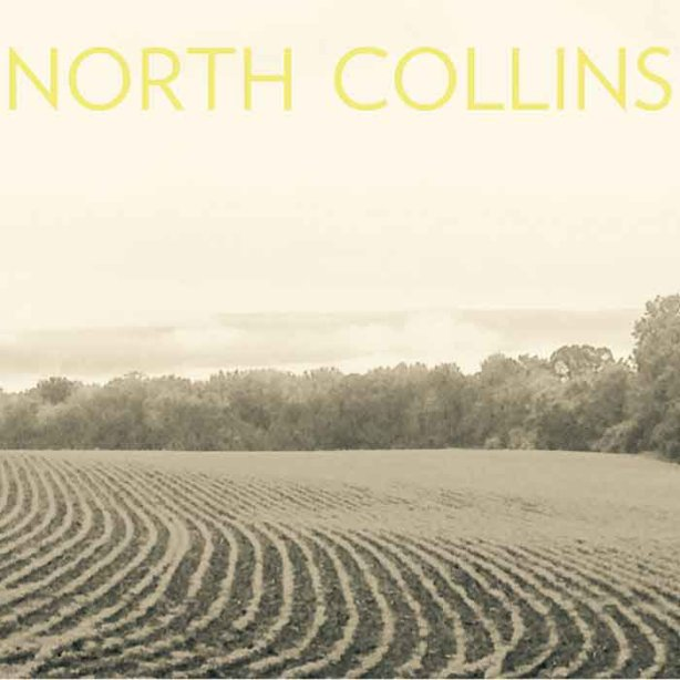 MM Shorts 793: North Collins